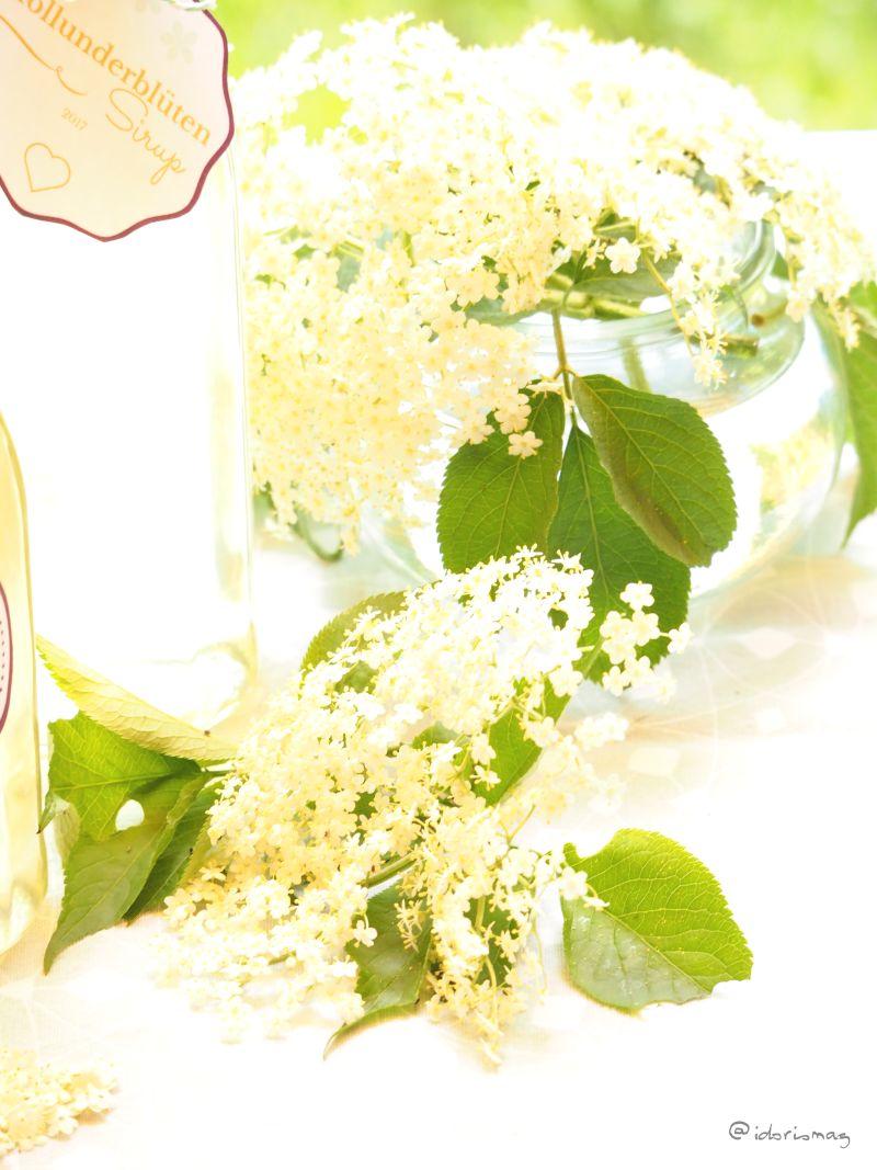 Holunderblüten Sirup