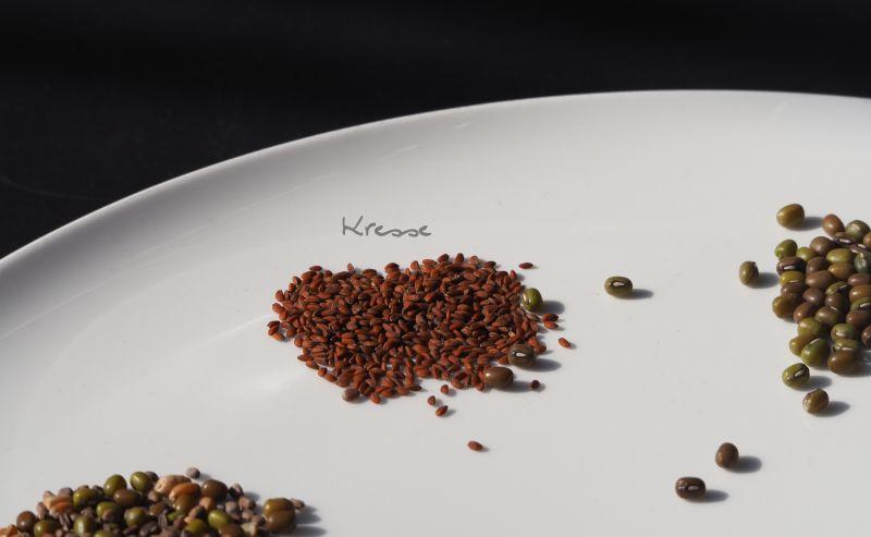 kleine gr ne kraftwerke sprossen selbst ziehen vegane rezepte lecker vegan essen trinken. Black Bedroom Furniture Sets. Home Design Ideas
