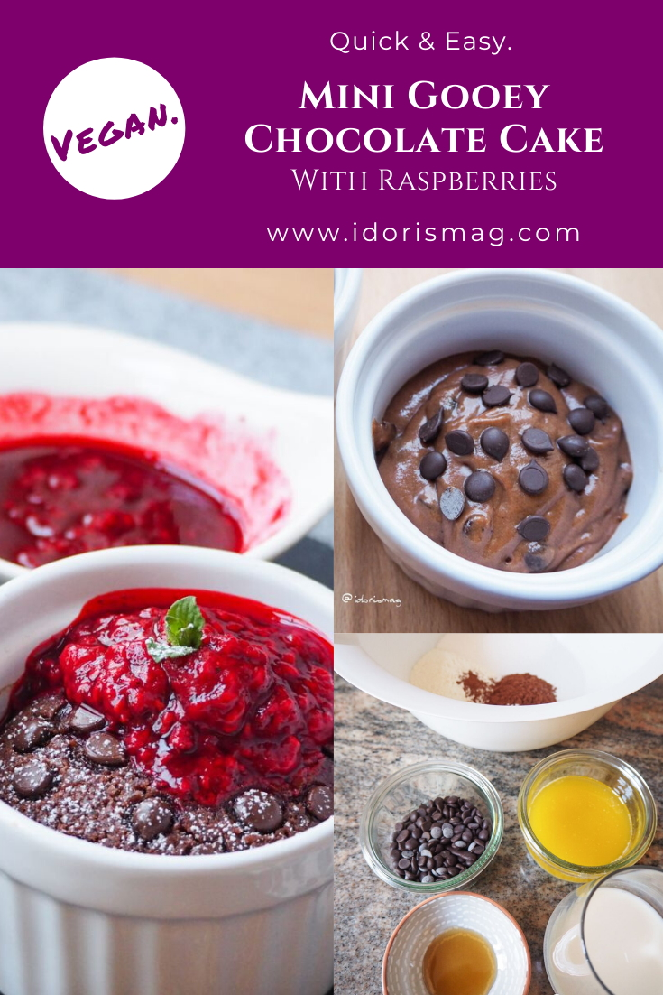 Quick & Easy Mugcake: Fudgy chocolate cake with raspberry sauce